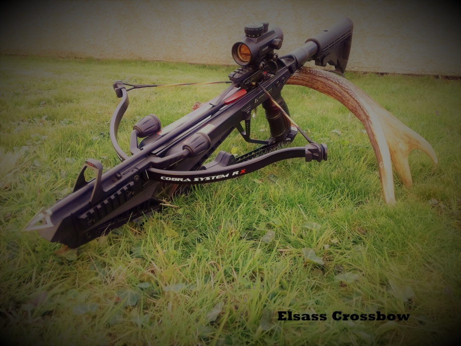 elsass crossbow - EK ARCHERY